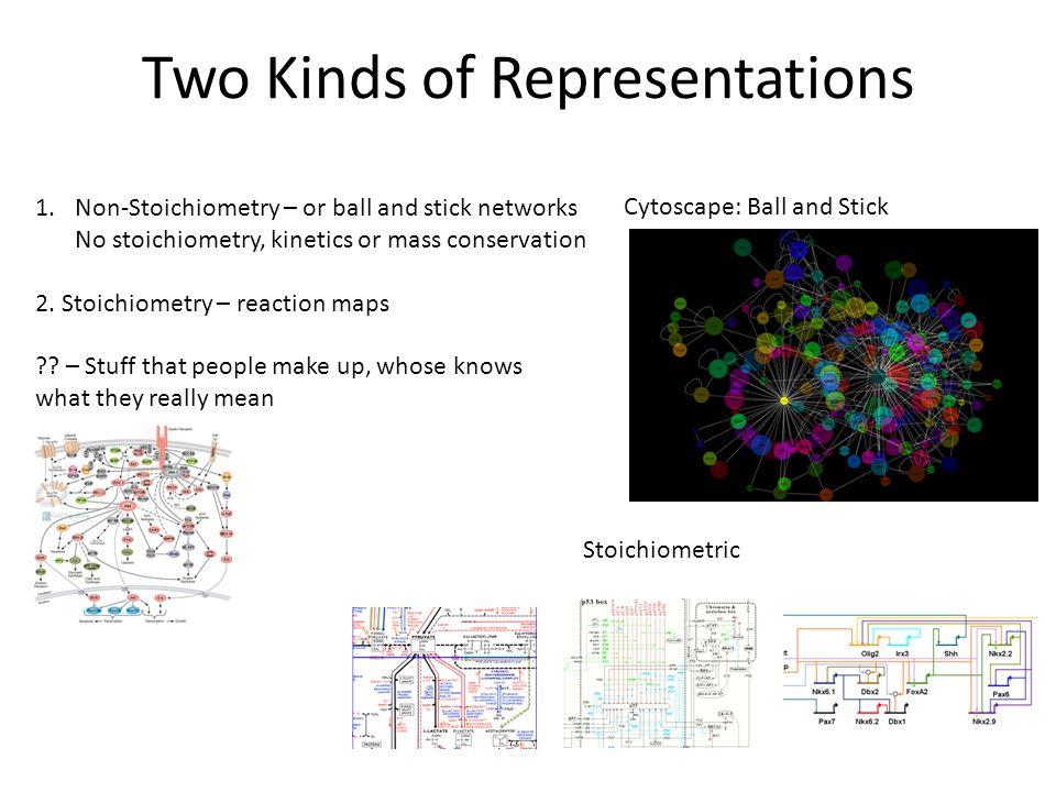 Two Kinds of Representations 1.Non-Stoichiometry – or ball and stick networks No stoichiometry, kinetics or mass conservation 2.