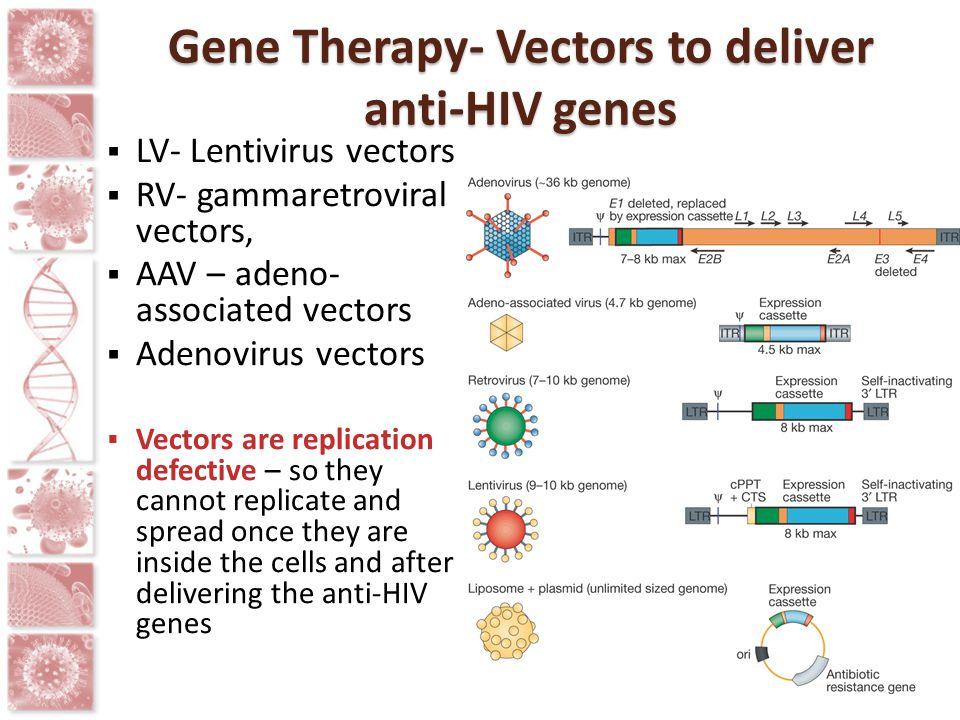 Gene Therapy- Vectors to deliver anti-HIV genes  LV- Lentivirus vectors  RV- gammaretroviral vectors,  AAV – adeno- associated vectors  Adenovirus