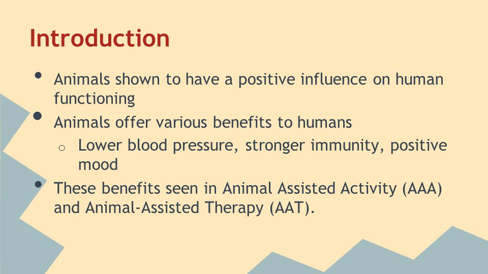 Introduction Animals shown to have a positive influence on human functioning Animals offer various benefits to humans o Lower blood pressure, stronger immunity, positive mood These benefits seen in Animal Assisted Activity (AAA) and Animal-Assisted Therapy (AAT).