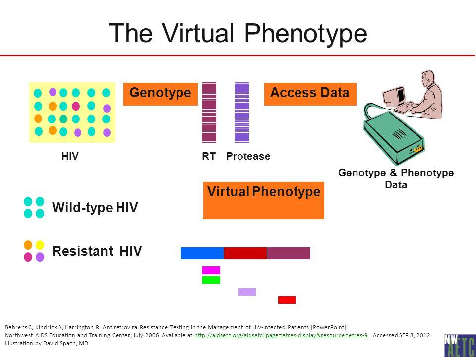 The Virtual Phenotype Genotype ProteaseRTHIV Access Data Genotype & Phenotype Data Virtual Phenotype Wild-type HIV Resistant HIV Behrens C, Kindrick A