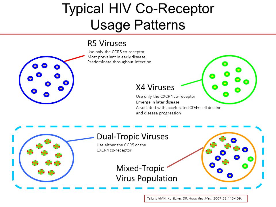 Typical HIV Co-Receptor Usage Patterns R5 Viruses Use only the CCR5 co-receptor Most prevalent in early disease Predominate throughout infection X4 Vi