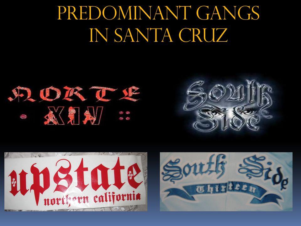 Predominant Gangs in Santa Cruz