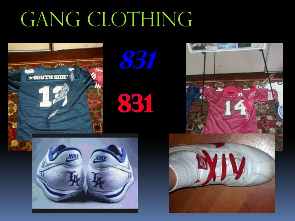 Gang Clothing 831