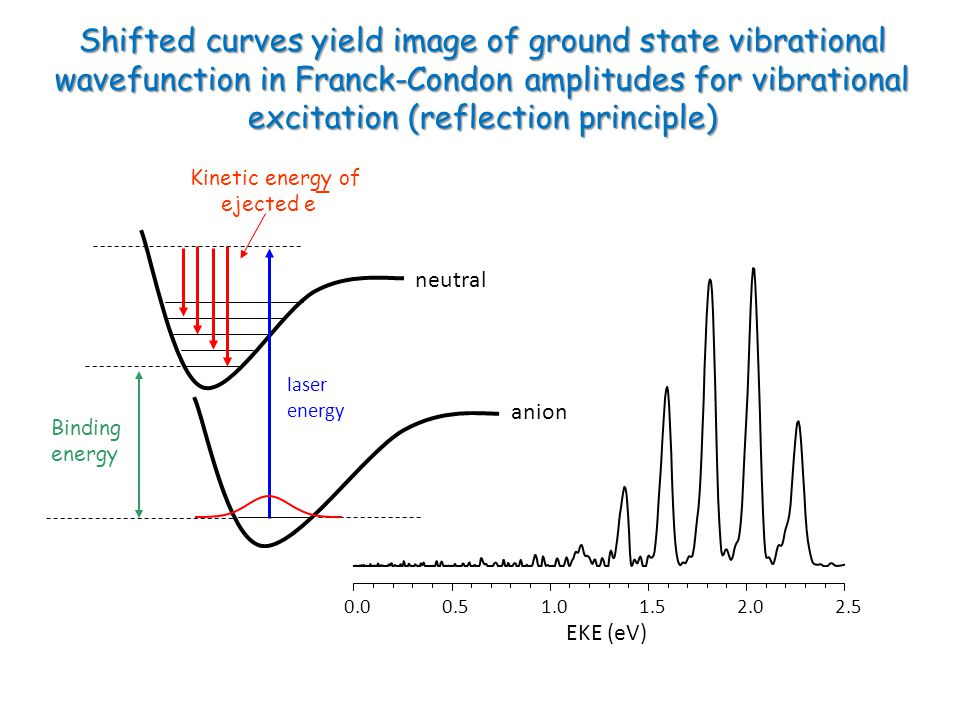 neutral anion laser energy Kinetic energy of ejected e¯ Binding energy EKE (eV) Shifted curves yield image of ground state vibrational wavefunction in Franck-Condon amplitudes for vibrational excitation (reflection principle)