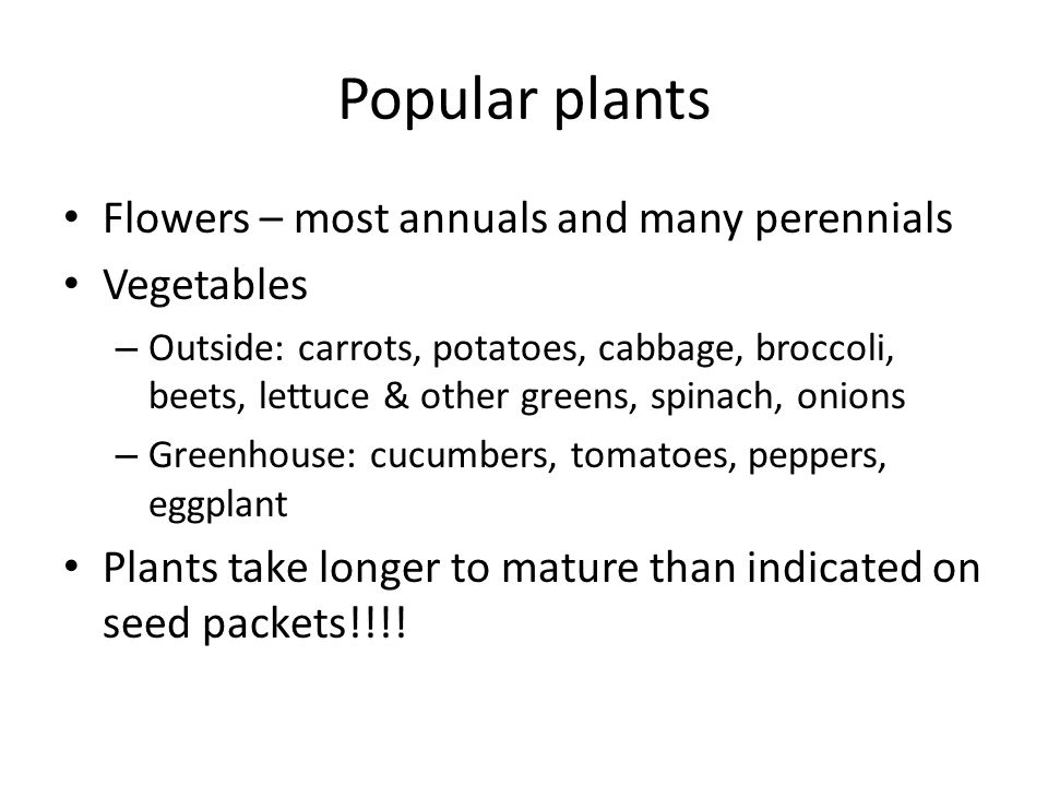 Popular plants Flowers – most annuals and many perennials Vegetables – Outside: carrots, potatoes, cabbage, broccoli, beets, lettuce & other greens, s