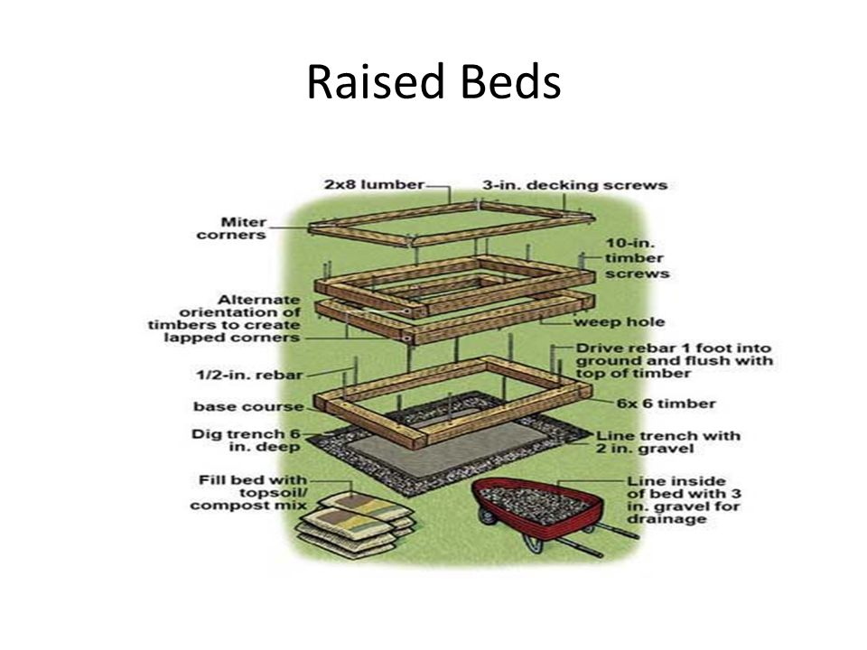 Raised Bed Construction Use pressure treated lumber, redwood, or cedar for long life Can also use untreated wood, logs, stone, bricks Other ideas: – http://carryongardening.org.uk/files/documents/ How to build raised beds final_Nov08.pdf http://carryongardening.org.uk/files/documents/ How to build raised beds final_Nov08.pdf