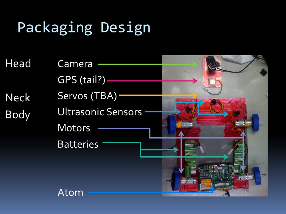 Camera GPS (tail?) Servos (TBA) Ultrasonic Sensors Motors Batteries Atom Head Neck Body