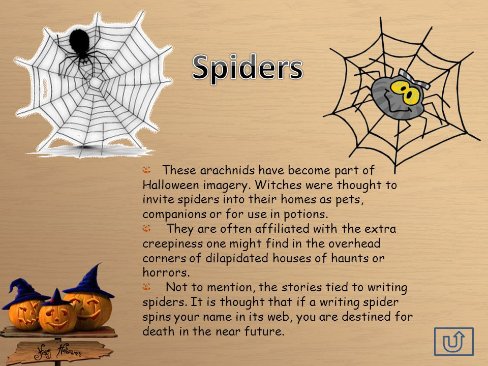 These arachnids have become part of Halloween imagery.