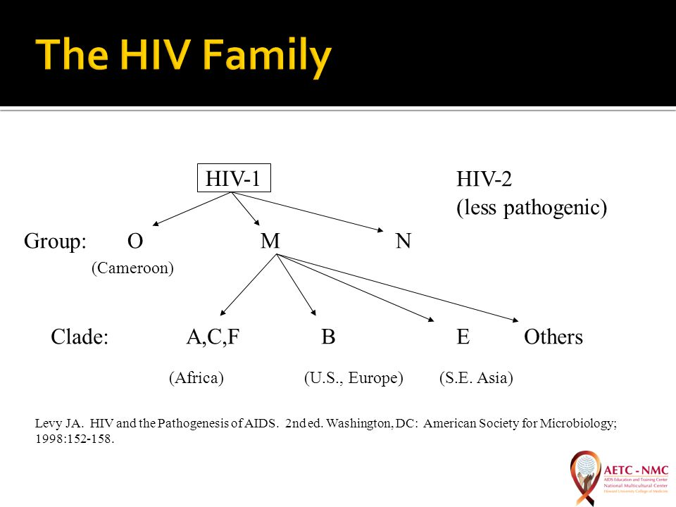 HIV-1HIV-2 Group: O M N Clade:A,C,FBEOthers (Africa)(U.S., Europe)(S.E.