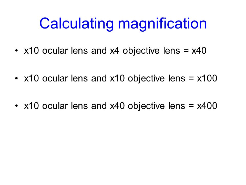 Calculating magnification x10 ocular lens and x4 objective lens = x40 x10 ocular lens and x10 objective lens = x100 x10 ocular lens and x40 objective lens = x400