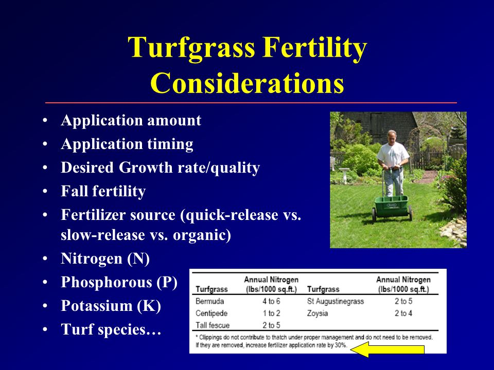 Turfgrass Fertility Considerations Application amount Application timing Desired Growth rate/quality Fall fertility Fertilizer source (quick-release vs.