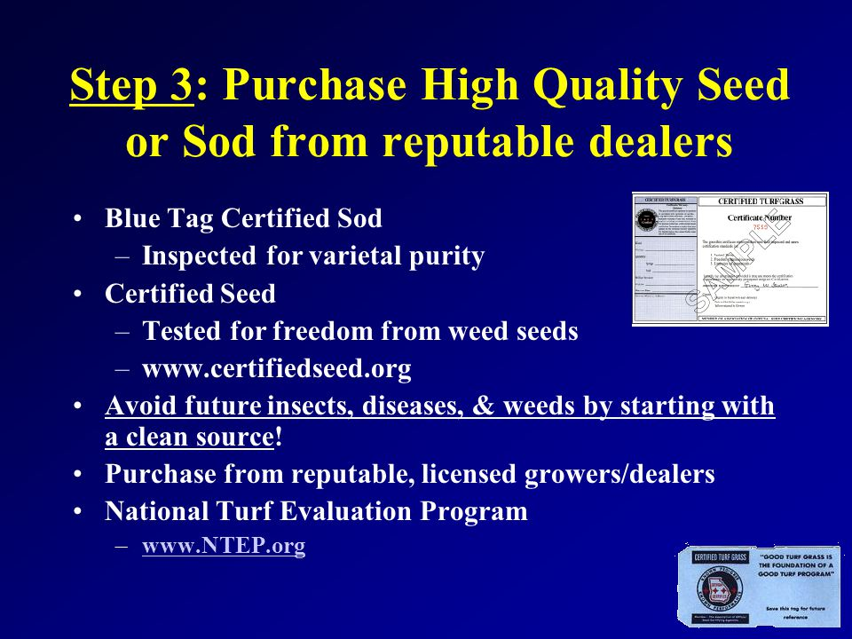 Step 3: Purchase High Quality Seed or Sod from reputable dealers Blue Tag Certified Sod –Inspected for varietal purity Certified Seed –Tested for freedom from weed seeds –www.certifiedseed.org Avoid future insects, diseases, & weeds by starting with a clean source.