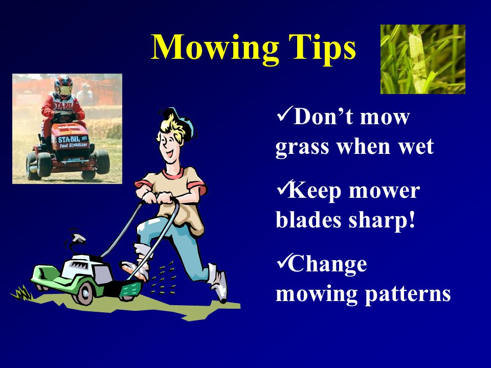 Mowing Tips Don't mow grass when wet Keep mower blades sharp! Change mowing patterns