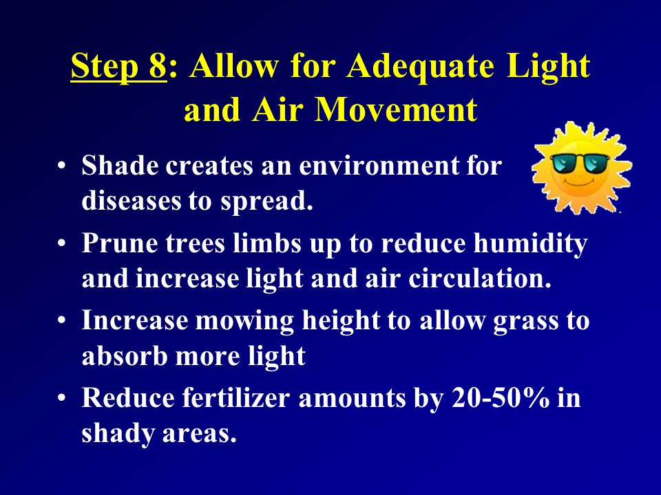 Step 8: Allow for Adequate Light and Air Movement Shade creates an environment for diseases to spread.
