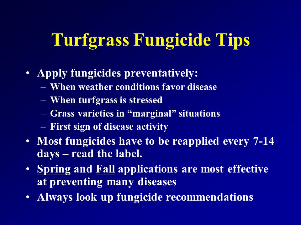 Turfgrass Fungicide Tips Apply fungicides preventatively: –When weather conditions favor disease –When turfgrass is stressed –Grass varieties in marginal situations –First sign of disease activity Most fungicides have to be reapplied every 7-14 days – read the label.