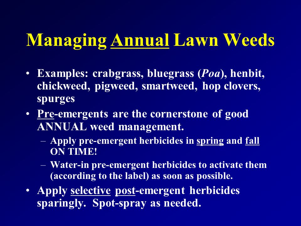 Managing Annual Lawn Weeds Examples: crabgrass, bluegrass (Poa), henbit, chickweed, pigweed, smartweed, hop clovers, spurges Pre-emergents are the cornerstone of good ANNUAL weed management.