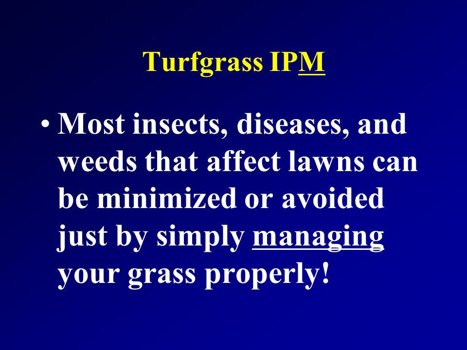 Adequate Water Proper soil pH Soil Fertility Adequate Light Pesticide Rates Fertilizer (N) Timing Avoid soil Compaction Control Thatch Mowing Height Pest Thresholds Scouting & Monitoring Good Drainage Adapted Variety Mowing Frequency Turfgrass IPM