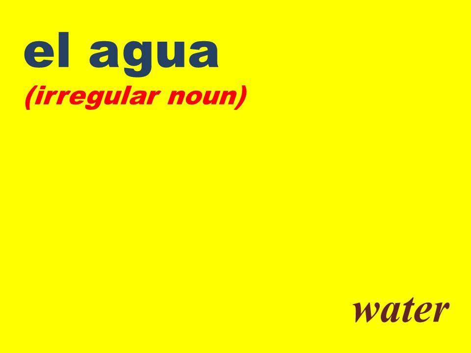 el agua (irregular noun) water
