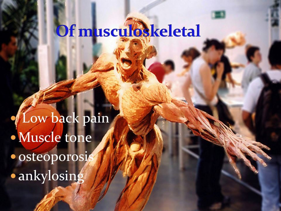 Low back pain Muscle tone osteoporosis ankylosing