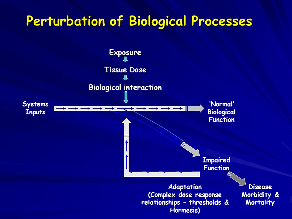 Systems Inputs 'Normal' Biological Function Impaired Function Adaptation (Complex dose response relationships – thresholds & Hormesis) Disease Morbidity & Mortality Exposure Tissue Dose Biological interaction Perturbation of Biological Processes