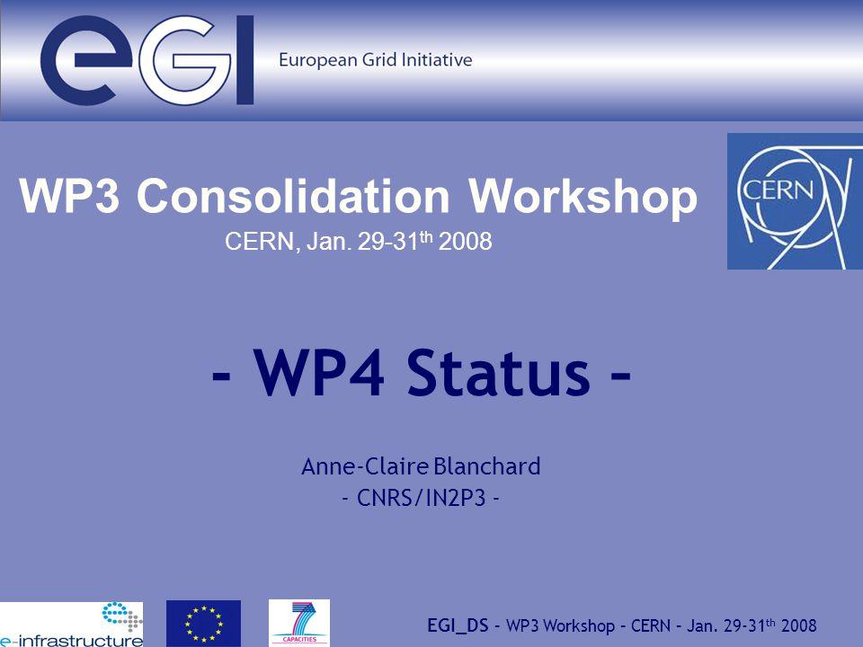 EGI_DS – WP3 Workshop – CERN – Jan. 29-31 th 2008 WP3 Consolidation Workshop CERN, Jan.