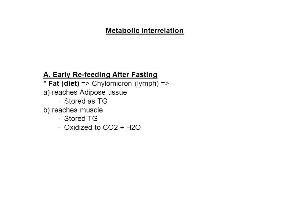 Metabolic Interrelation A.