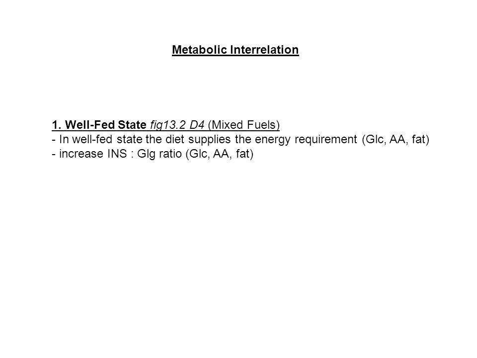 Metabolic Interrelation 1.