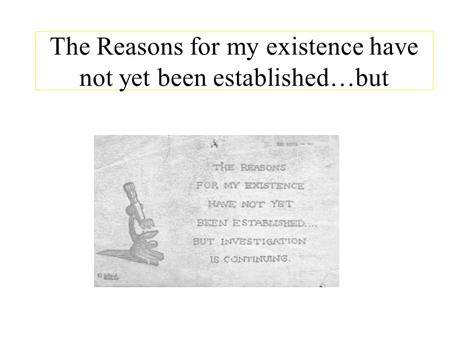 The Reasons for my existence have not yet been established…but