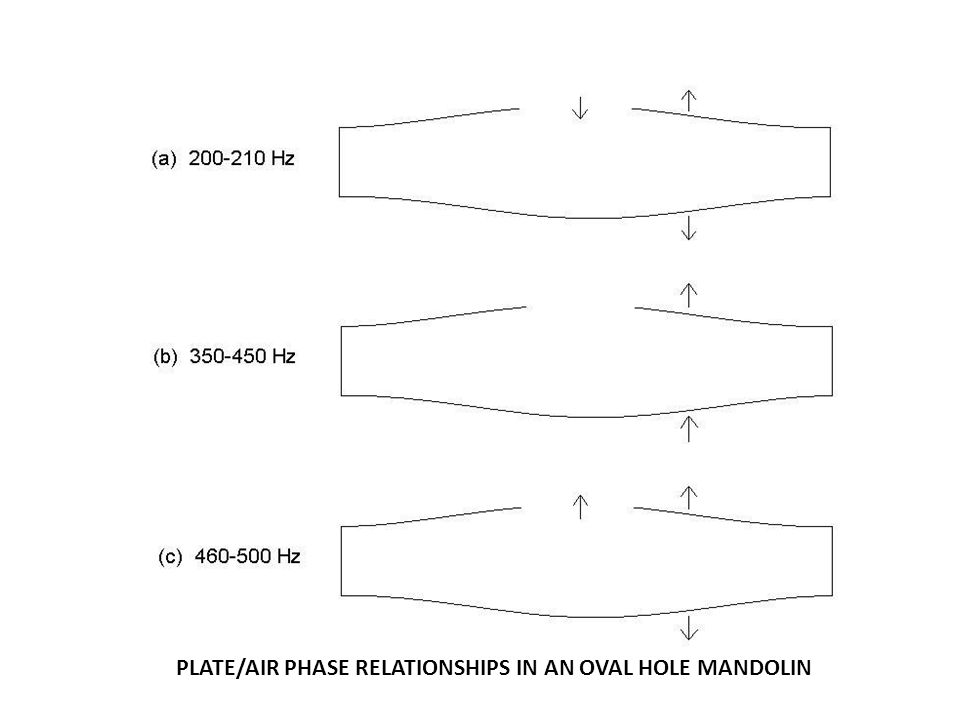 PLATE/AIR PHASE RELATIONSHIPS IN AN OVAL HOLE MANDOLIN