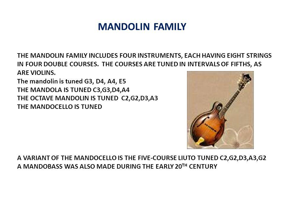 MODE SHAPES IN A 1924 GIBSON F5 MANDOLIN TOP PLATE 472 Hz 868 Hz 1118 Hz BACK PLATE 278 Hz 778 Hz 1118 Hz