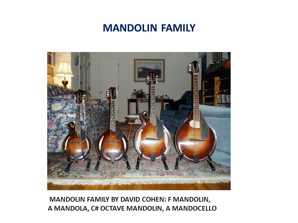 MANDOLIN FAMILY MANDOLIN FAMILY BY DAVID COHEN: F MANDOLIN, A MANDOLA, C# OCTAVE MANDOLIN, A MANDOCELLO
