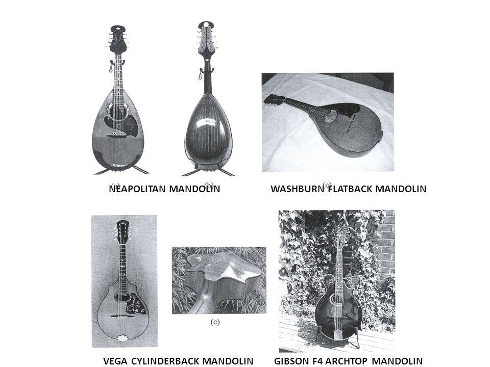 NEAPOLITAN MANDOLIN WASHBURN FLATBACK MANDOLIN VEGA CYLINDERBACK MANDOLIN GIBSON F4 ARCHTOP MANDOLIN