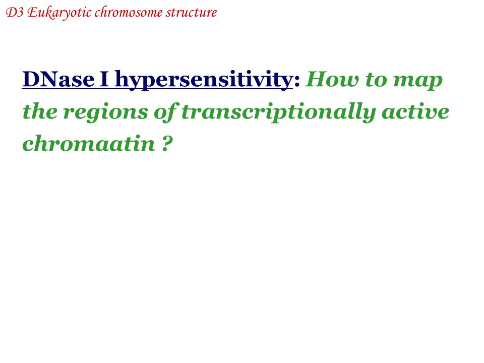 DNase I hypersensitivity: How to map the regions of transcriptionally active chromaatin ? D3 Eukaryotic chromosome structure