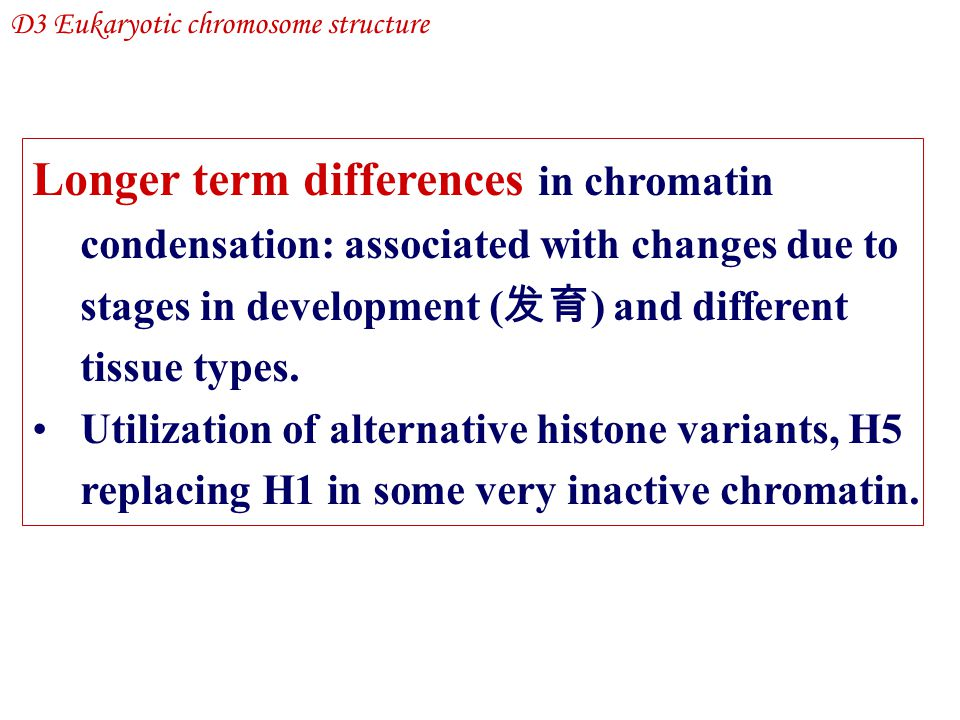 Longer term differences in chromatin condensation: associated with changes due to stages in development ( 发育 ) and different tissue types. Utilization