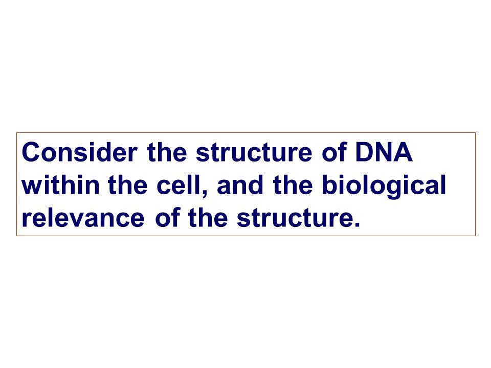 Telomere & Telomerase Repeat sequence: Tetrahymena- TTGGGG; human- TTAGGG D3 Eukaryotic Chromosomal Structure D3 Eukaryotic chromosome structure