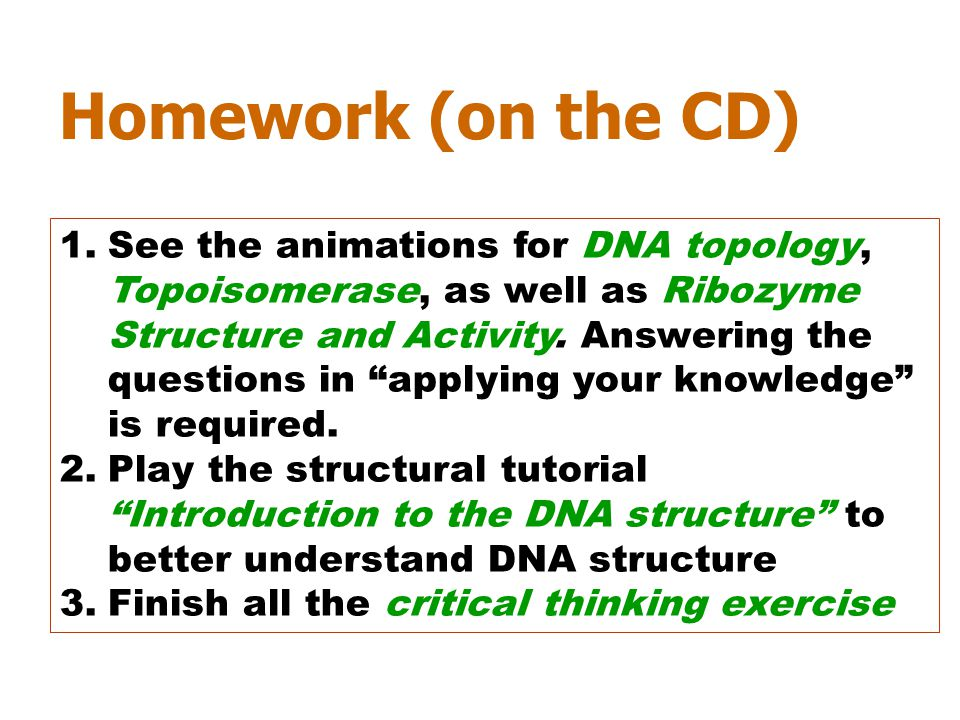 """Homework (on the CD) 1.See the animations for DNA topology, Topoisomerase, as well as Ribozyme Structure and Activity. Answering the questions in """"app"""