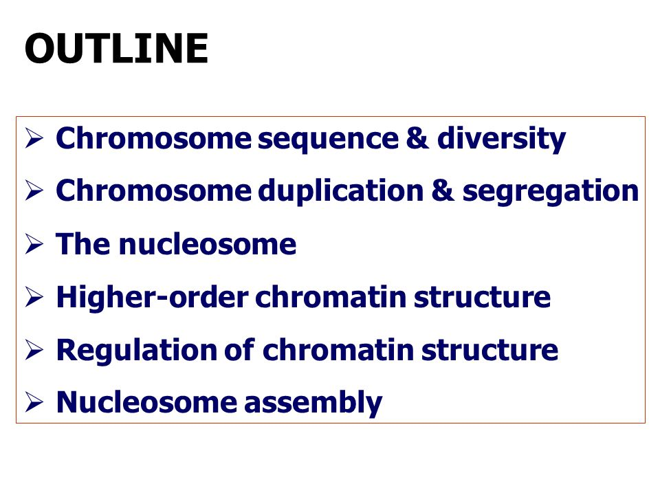 OUTLINE  Chromosome sequence & diversity  Chromosome duplication & segregation  The nucleosome  Higher-order chromatin structure  Regulation of c