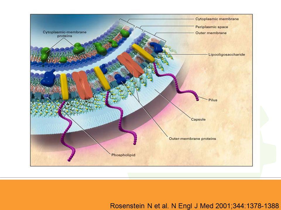 Rosenstein N et al. N Engl J Med 2001;344:1378-1388