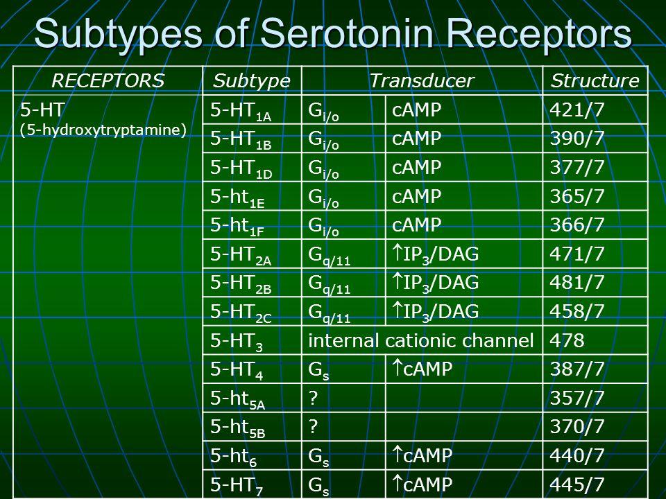 Subtypes of Serotonin Receptors RECEPTORSSubtypeTransducerStructure 5-HT (5-hydroxytryptamine) 5-HT 1A G i/o cAMP421/7 5-HT 1B G i/o cAMP390/7 5-HT 1D G i/o cAMP377/7 5-ht 1E G i/o cAMP365/7 5-ht 1F G i/o cAMP366/7 5-HT 2A G q/11 IP 3 /DAG 471/7 5-HT 2B G q/11 IP 3 /DAG 481/7 5-HT 2C G q/11 IP 3 /DAG 458/7 5-HT 3 internal cationic channel478 5-HT 4 GsGs cAMP 387/7 5-ht 5A 357/7 5-ht 5B 370/7 5-ht 6 GsGs cAMP 440/7 5-HT 7 GsGs cAMP 445/7