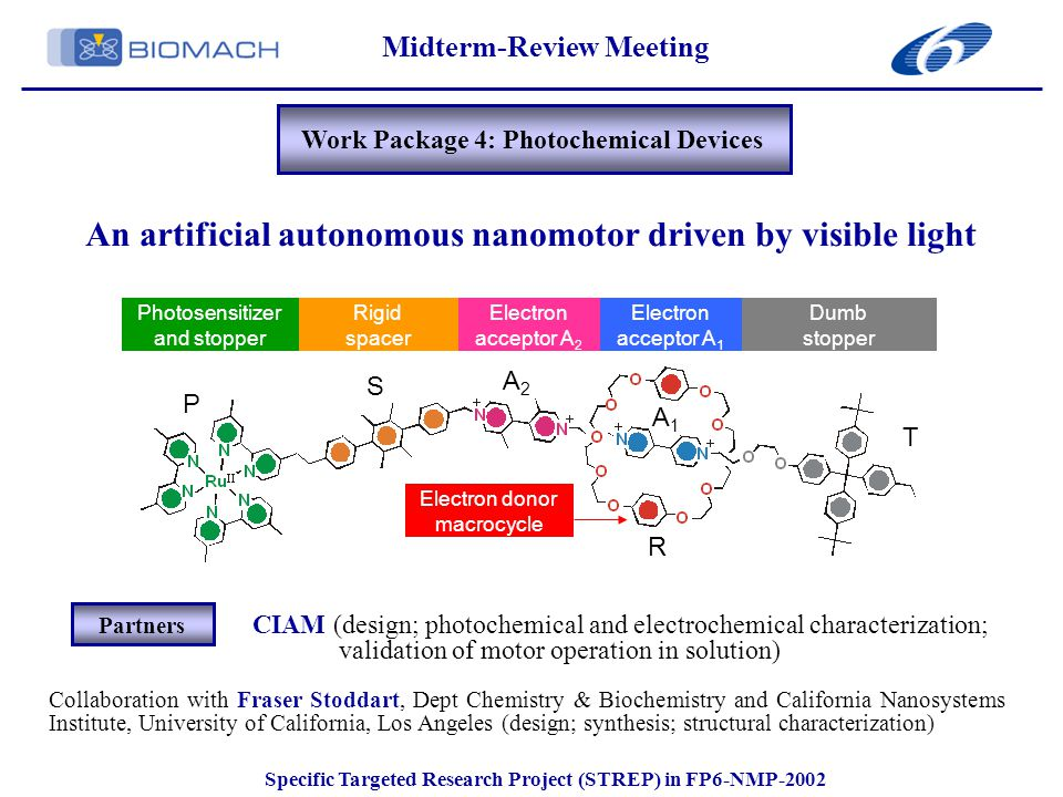 Collaboration with Fraser Stoddart, Dept Chemistry & Biochemistry and California Nanosystems Institute, University of California, Los Angeles (design; synthesis; structural characterization) CIAM (design; photochemical and electrochemical characterization; validation of motor operation in solution) Partners Midterm-Review Meeting Specific Targeted Research Project (STREP) in FP6-NMP-2002 Work Package 4: Photochemical Devices An artificial autonomous nanomotor driven by visible light Photosensitizer and stopper Rigid spacer Electron acceptor A 2 Electron acceptor A 1 Dumb stopper Electron donor macrocycle P S A2A2 A1A1 T R