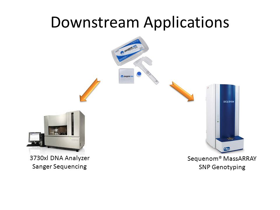 Downstream Applications Sequenom® MassARRAY SNP Genotyping 3730xl DNA Analyzer Sanger Sequencing