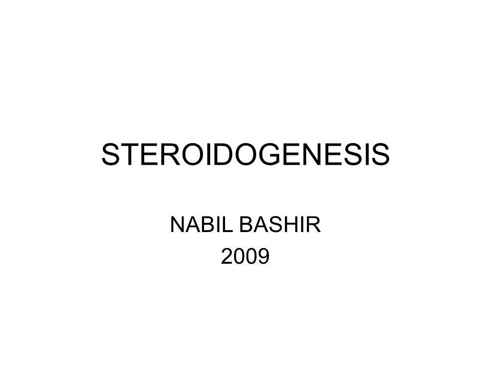 STEROIDOGENESIS NABIL BASHIR 2009