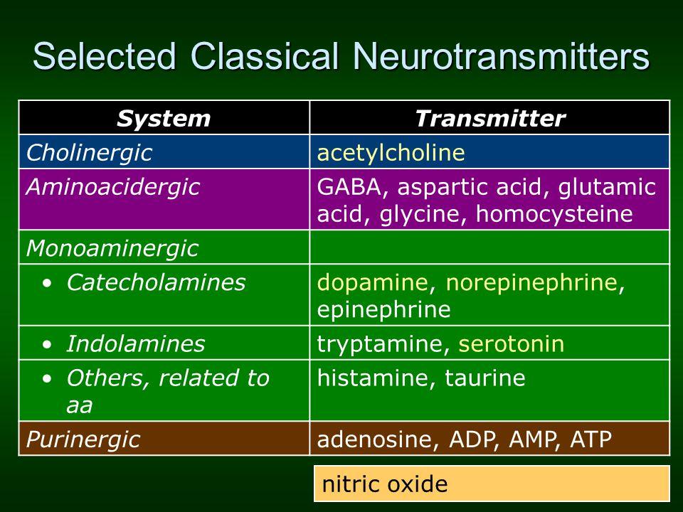 Selected Classical Neurotransmitters SystemTransmitter Cholinergicacetylcholine AminoacidergicGABA, aspartic acid, glutamic acid, glycine, homocystein