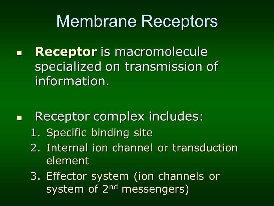 Membrane Receptors Receptor is macromolecule specialized on transmission of information. Receptor is macromolecule specialized on transmission of info