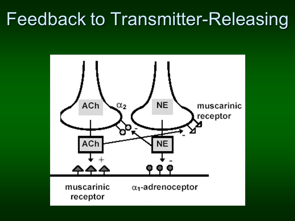 Feedback to Transmitter-Releasing