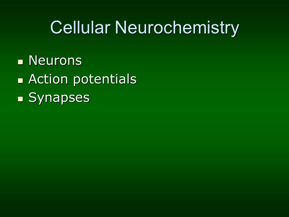 Cellular Neurochemistry Neurons Neurons Action potentials Action potentials Synapses Synapses