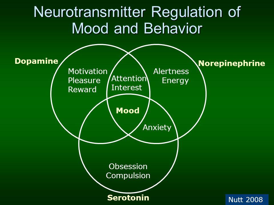 Neurotransmitter Regulation of Mood and Behavior Nutt 2008 Motivation Pleasure Reward Alertness Energy Obsession Compulsion Dopamine Norepinephrine Se
