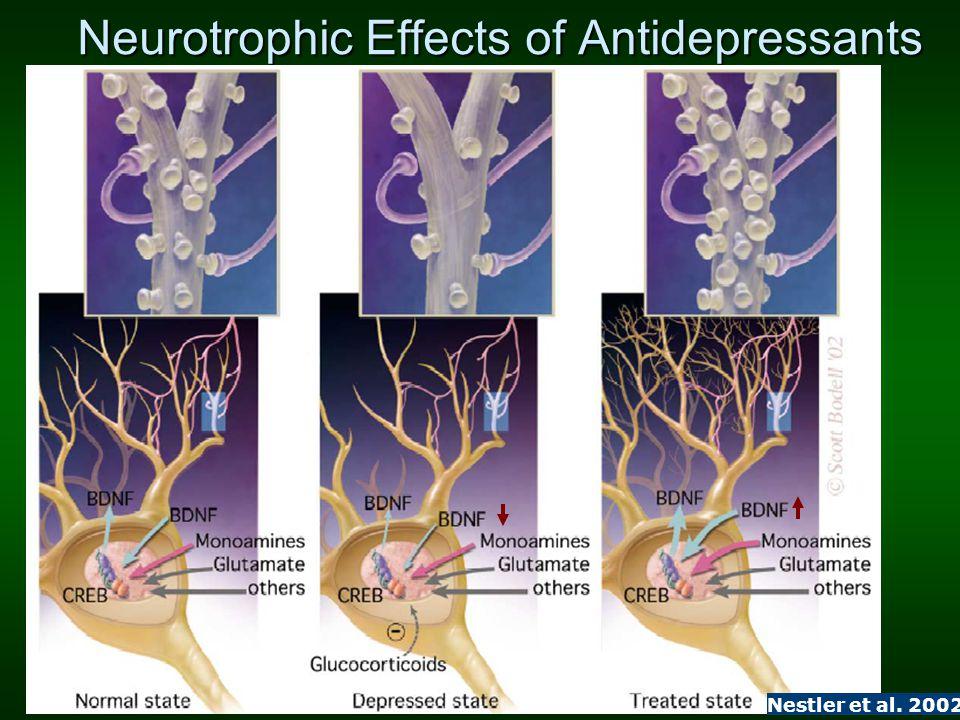 Neurotrophic Effects of Antidepressants Nestler et al. 2002