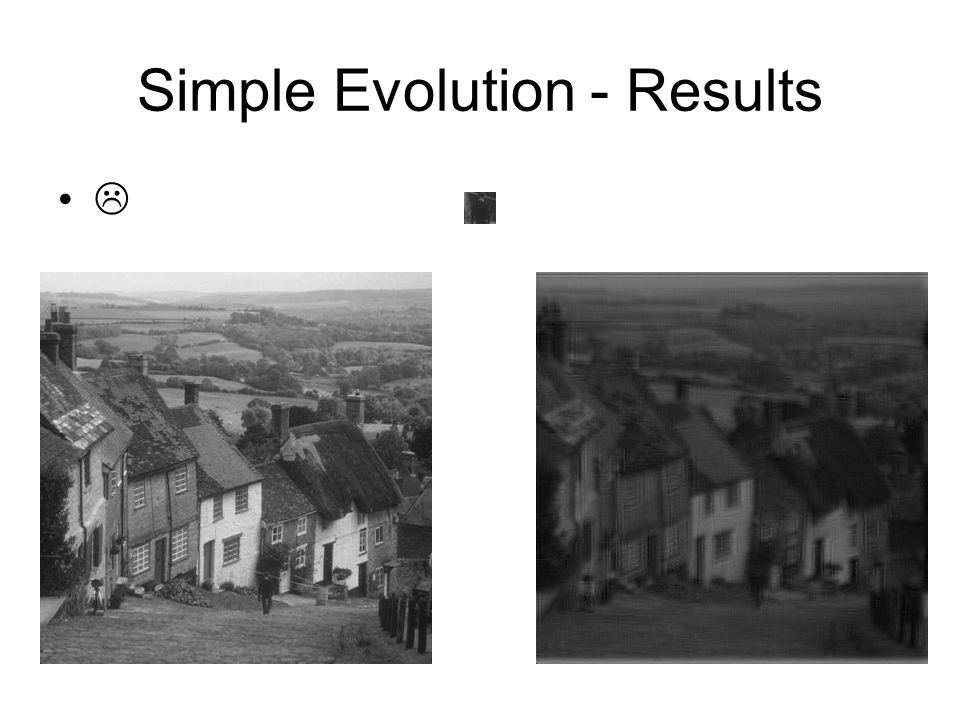 Simple Evolution - Results 