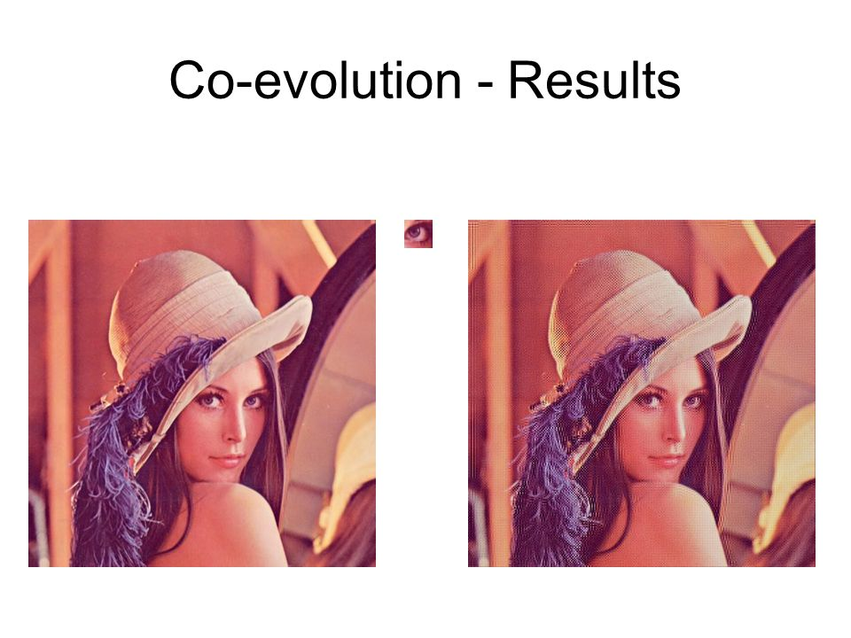Co-evolution - Results